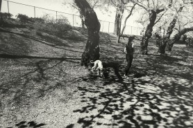 Central Park Woman with Dog